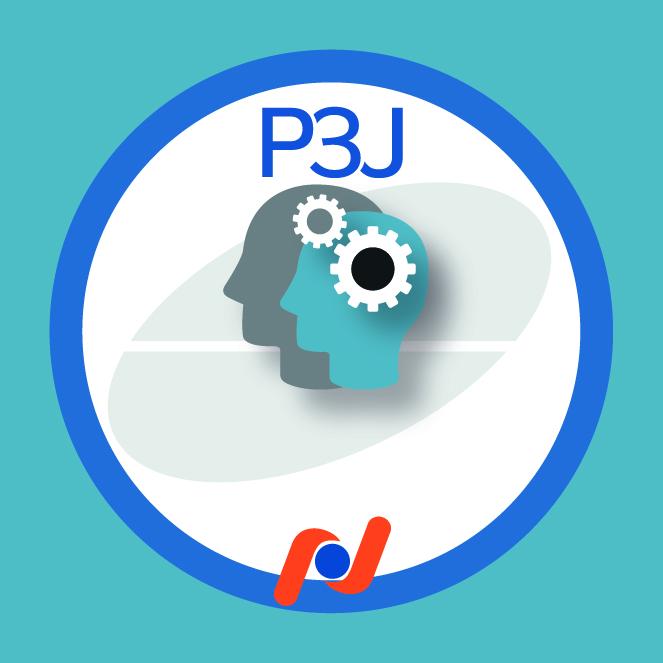 P3J - Adesivos 3