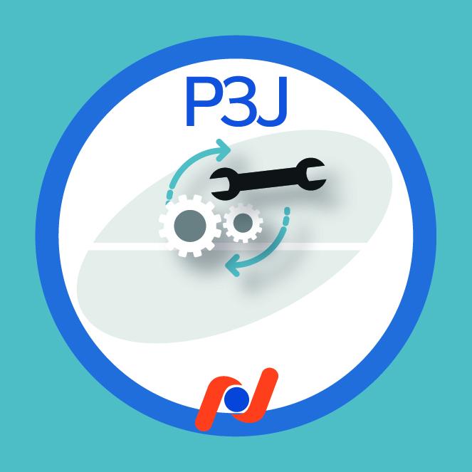 P3J - Adesivos 7